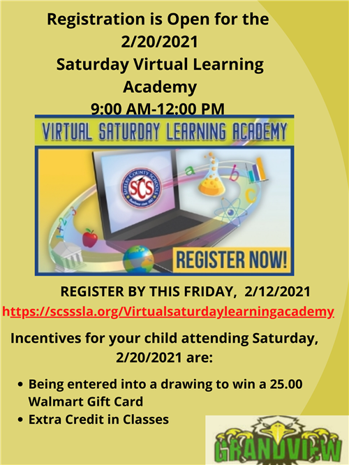 2/20 Saturday virtual academy sign up info